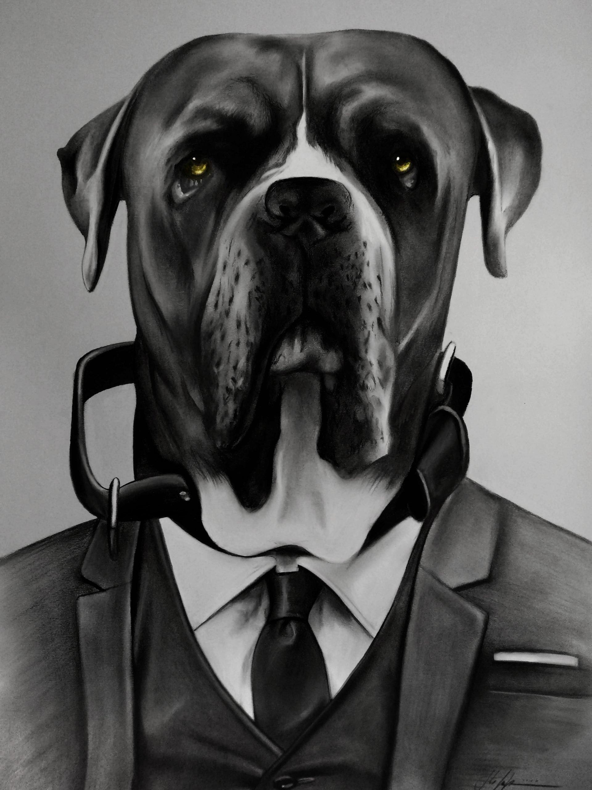 Doggrey